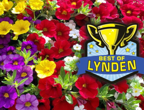 Best of Lynden — Thank you!